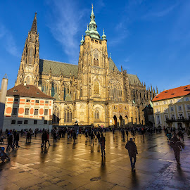 St. Vitus Chatedral by Bojan Porenta - City,  Street & Park  Historic Districts ( church, czech republic, cathedral, st. vitus chatedral, prague )