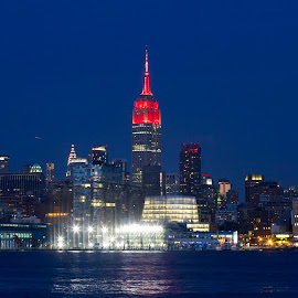 Empire Sate Bldg. N.Y.C. by Eurico David - City,  Street & Park  Skylines