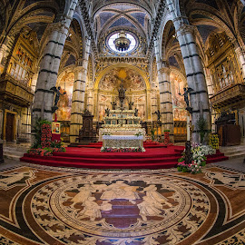 Siena - Duomo by Pascal Hubert - Buildings & Architecture Places of Worship