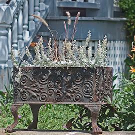 Old stove recycled in flowers pot by Réjean Côté - Artistic Objects Antiques ( poêle, stove, 135mm, eos 20d, fleurs, flowers, pot, old stove recycled in flowers pot, magnon )