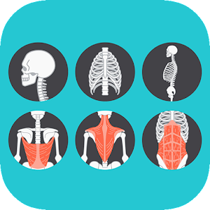 A to Z Anatomy for Android