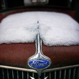 Ford  by Todd Reynolds - Transportation Automobiles