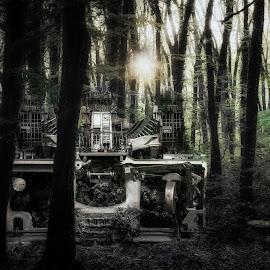 Typewriter in the wood by Plamen Mirchev - Digital Art Places ( mystical, abstrakt, green, machine, dark, wood, darkness, trees, sun, machinery )