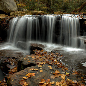 by Kevin Frick - Landscapes Waterscapes ( autumn, west virginia, fall, waterfall, leaves, deckers creek )