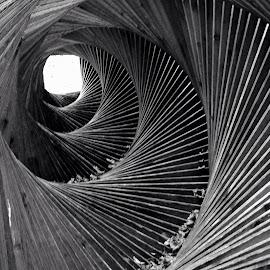 Grovigli emotivi.... by Marco Contessa - Abstract Light Painting ( spirale )