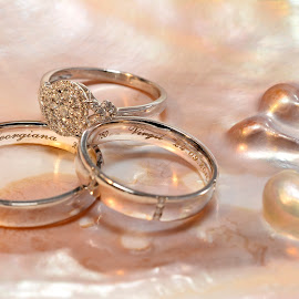 Wedding rings by Sorin Lazar Photography - Artistic Objects Jewelry ( arrangement, colors, wedding_rings, engagement_ring )