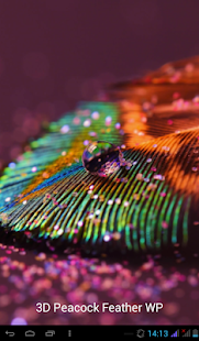 3D Peacock Feather WP - screenshot