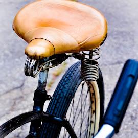 spring loaded by Eva Ryan - Transportation Bicycles ( wheel, seat, springs, bicycle,  )