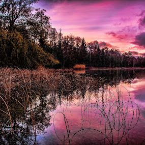 Sunrise over Loon Lake by Kevin Stacey - Landscapes Sunsets & Sunrises ( clouds, michigan, sleeping bear dunes, loon lake, honor, lake, sunrise, kstaceyphotography.com )