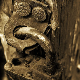 old padlock by Peter Rippingale - Artistic Objects Other Objects