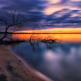 James River Dawn by James Gramm - Landscapes Waterscapes ( clouds, sky, tree, color, reflections, long exposure, beach, sunrise, light, river )
