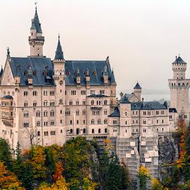 Neuschwanstein Castle  by Stanley P. - Buildings & Architecture Other Exteriors ( castle, travel )