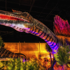 Spinosaurus by Dave Walters - Artistic Objects Other Objects ( spinosaurus, dinosaur, lumix fz2500, colors, digital art )