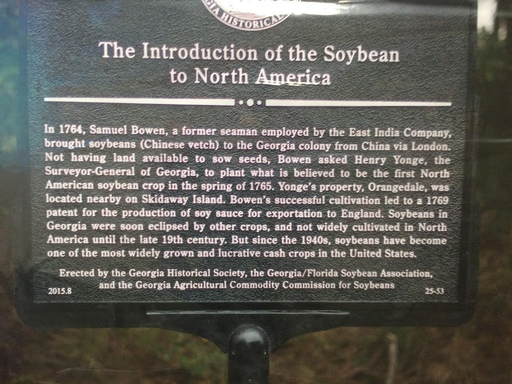 The Introduction of the Soybean to North America In 1764, Samuel Bowen, a former seaman employed by the East India Company, brought soybeans (Chinese vetch) to the Georgia colony from China via ...