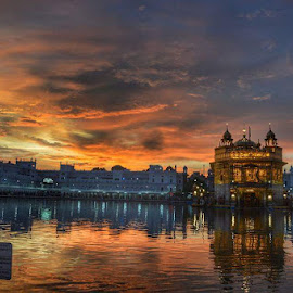 The Golden Temple by Raghav Sharma - Uncategorized All Uncategorized ( temple, reflection, punjab, india, golden )