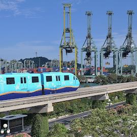 Light Rail Train by Koh Chip Whye - Transportation Trains (  )