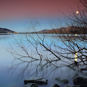 Moonlight at Govenors Bay by Greg Van Dugteren - Landscapes Waterscapes