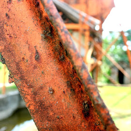 Rusty structure by Julia Pegler - Buildings & Architecture Bridges & Suspended Structures ( green, rusty, steel, bokeh, abandoned )