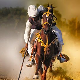 Tiwana by Abdul Rehman - Sports & Fitness Other Sports ( brave, sand, pakistan, adventure, tent pegging, thrilling, dangerous sport, dust, sport, dangerous, rural, dusty, rural sports )