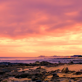 Bliss by Johann Bekker - Novices Only Landscapes ( beach )