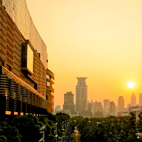 sunset of shanghai  by Ezuwan Razali - City,  Street & Park  Skylines