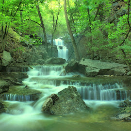EVERGREEN by Dana Johnson - Landscapes Waterscapes ( waterfalls, waterscape, cascade, falls, landscape )