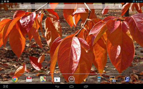 Autumn Leaves LWP - screenshot