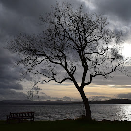 Time to think by Elaine Orourke - Landscapes Weather