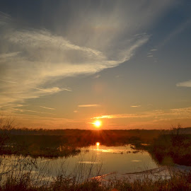 Reflecting on the Day by Robert Coffey - Landscapes Sunsets & Sunrises ( clouds, water, sky, wetlands, sunset, reflections )