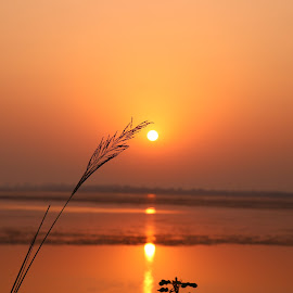 Sunrise by Sandip Rajguru - Nature Up Close Water ( water, waterscape, lake, sunrise, golden hour )