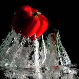 Red Pepper Splash by Glenn Miller - Food & Drink Fruits & Vegetables ( abstract, red, waterdrop, bell pepper, vegetable )