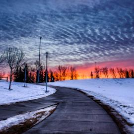 by Joseph Law - City,  Street & Park  City Parks