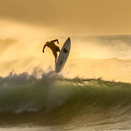 by Keith Sutherland - Sports & Fitness Surfing ( flight, maui, surfing, surfer, sunset, wave, hawaii )