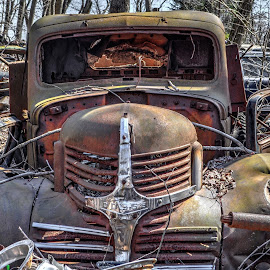 Rotting Dodge by Mike Roth - Transportation Automobiles