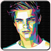 Martin Garrix Wallpaper APK icon