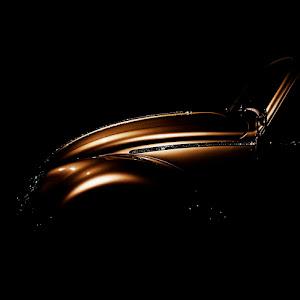 käfer 2.jpg