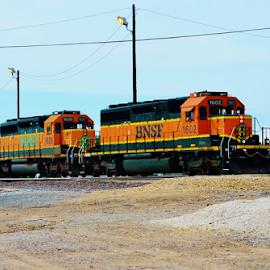 BNSF 1602, 1628  6444 by Jim Suter - Transportation Trains