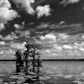 On the lake by Zeralda La Grange - Instagram & Mobile iPhone ( #landscape, #clouds, #nature, #sky, #water, #blackandwhite )