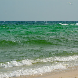 Waves by Kayla House - Landscapes Beaches ( water, sand, calming, green, waves, ocean, sandy, beach, relaxing, sun, sandy beaches, beaches, great, vacation, sunny, summer )