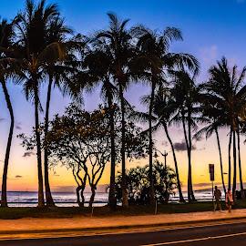 Hawaiian Skyline by Kathy Suttles - City,  Street & Park  Skylines