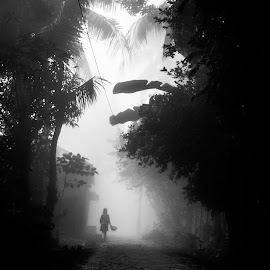 Foggy moring home return by Utpal Mondal - Novices Only Street & Candid