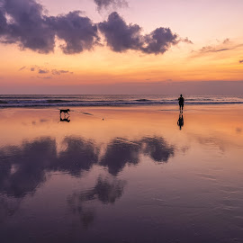 Man and his Dog at sunset by Keith Walmsley - Landscapes Sunsets & Sunrises ( coast, reflection, sunset, beach, clouds, water, landscape )