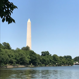 Washington Monument overlooking the Tidal Basin by Kim Ronningen-Mekonis - Buildings & Architecture Statues & Monuments