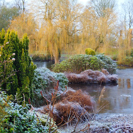 by Eleanor McCabe - Landscapes Weather