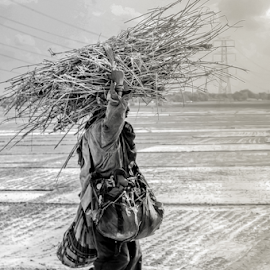 Work _ Load  by Nishchay Kashyap - People Street & Candids ( work load, work, assam, black and white, load, candid, road, people )