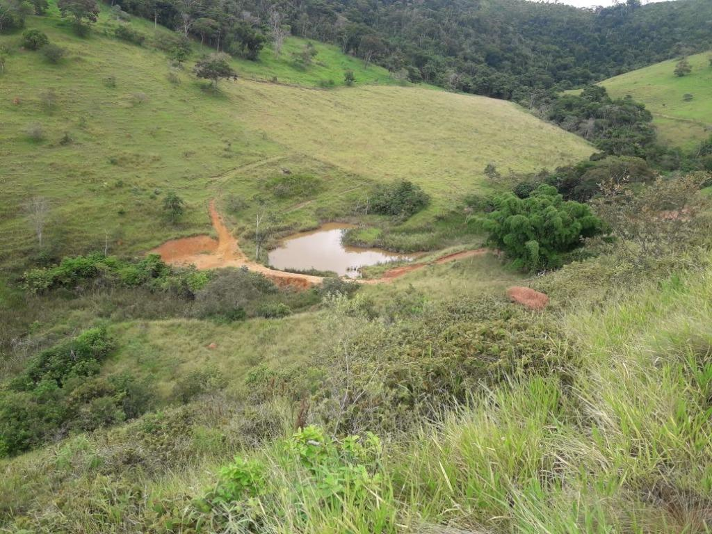 Fazenda / Sítio à venda em Werneck, Paraíba do Sul - RJ - Foto 5