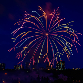 Firework Show by Joseph Law - Public Holidays July 4th
