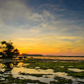 When the Sun Rise by Ade Yuda - Landscapes Waterscapes