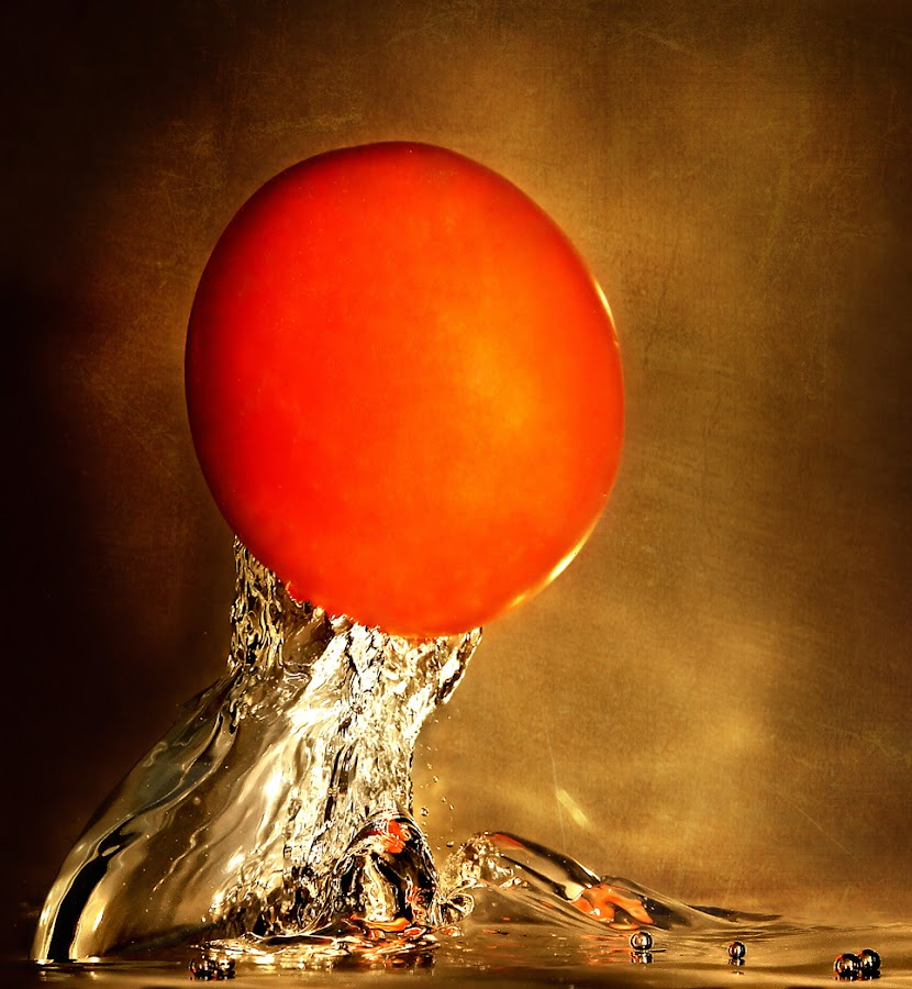 Tomato by Vincent Benex - Food & Drink Fruits & Vegetables