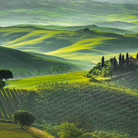 Soft light on the rolling Tuscan hills by Jim Harmer - Landscapes Prairies, Meadows & Fields ( tuscany, italia, val d'orcia, tuscano, travel, landscape, italy, san quirico d'orcia )